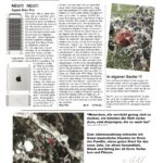 WK-News 10-19